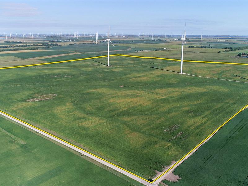 Farmland & Wind Income Auction : Danville : Vermilion County : Illinois