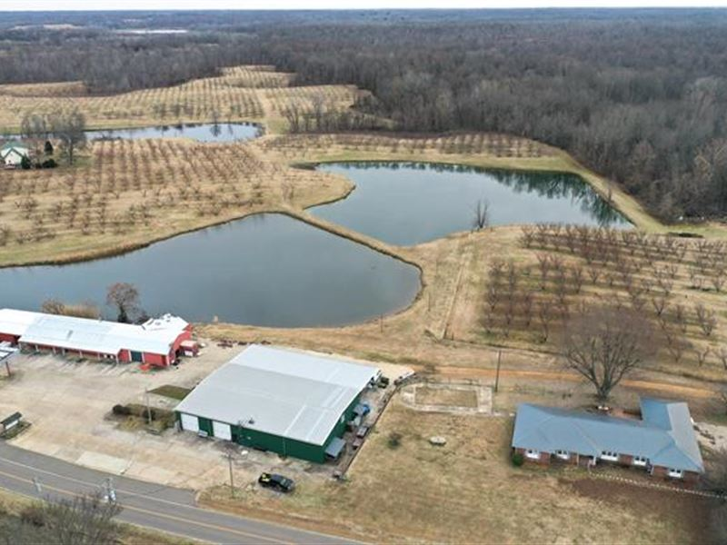 To Make an Offer, Please Call : Troy : Obion County : Tennessee