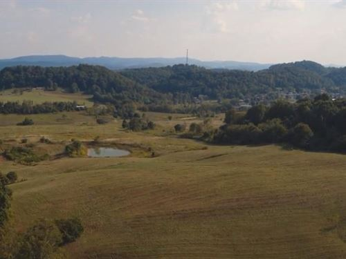 East Tennessee Farm Land Auction : Rogersville : Hawkins County : Tennessee
