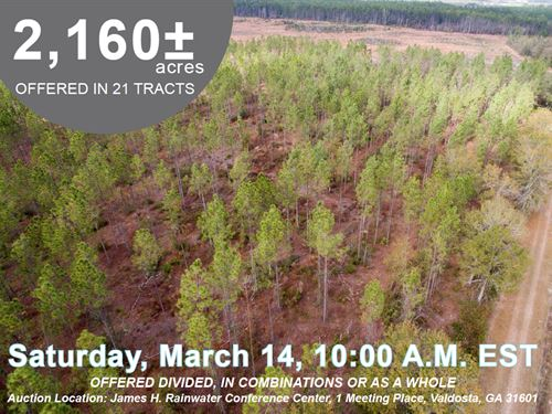 2,160 Acres Divided in 21 Tracts : Valdosta : Lowndes County : Georgia