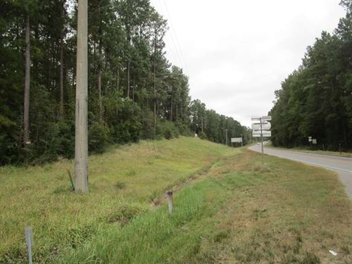 Commercial Land : Bay Minnette : Baldwin County : Alabama