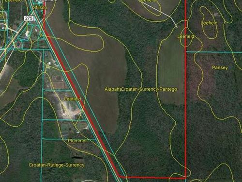 181 Acres of Vacant Land : Altha : Calhoun County : Florida