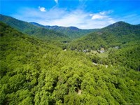 Mountain Acreage Adjacent to Pisgah : Marion : McDowell County : North Carolina