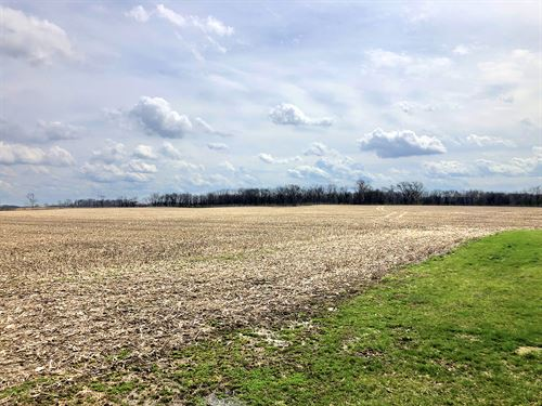 Important Ohio Land Auction : Washington Court House : Fayette County : Ohio