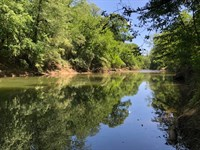 Auction Cahaba River Waterfront Lot : Hoover : Shelby County : Alabama