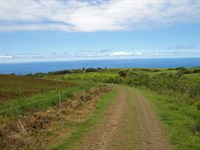 Views, Location, Soil, Sunshine : Umauma : Hawaii County : Hawaii