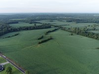 Land Auction In 19 Tracts : Nortonville : Hopkins County : Kentucky