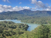 Auction, Lake Lure Mountain Land : Lake Lure : Rutherford County : North Carolina