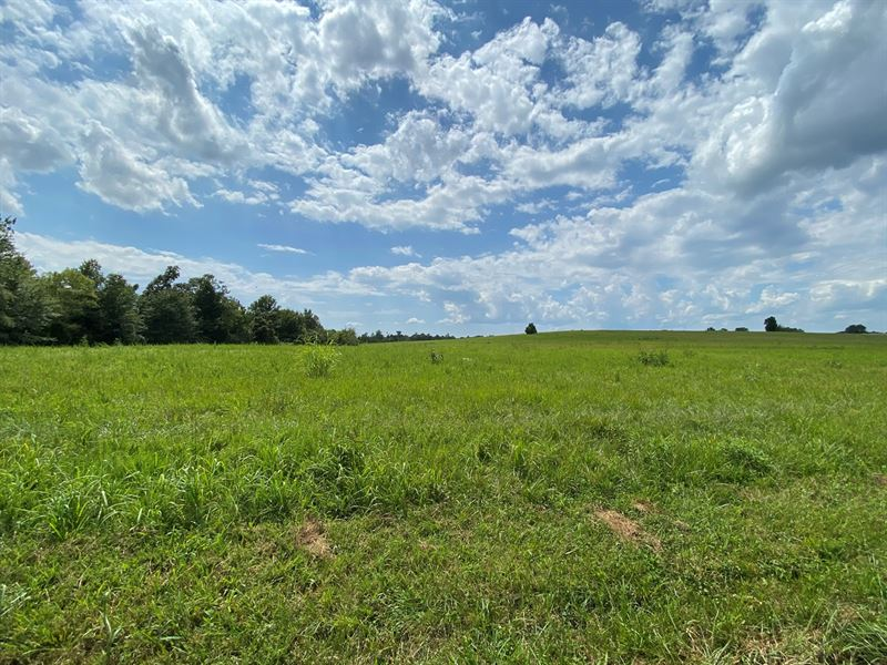 Land Auction, Crop, Pasture : Bowling Green : Warren County : Kentucky