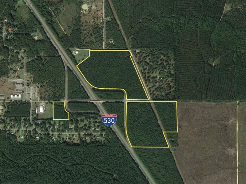 Online Auction, 71 Ac Mature Timber : Hensley : Saline County : Arkansas