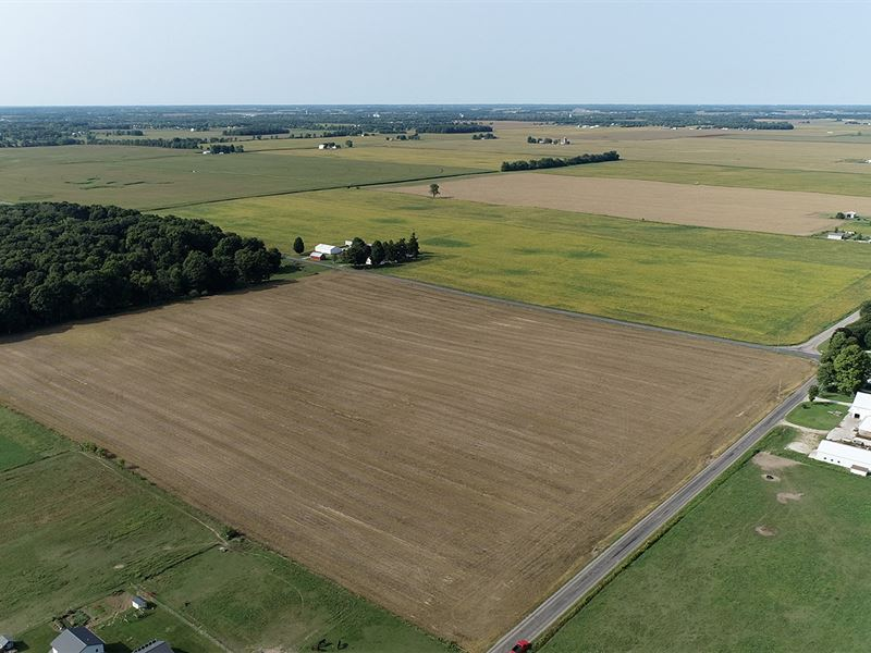 Farm Auction In Indiana : Ligonier : Noble County : Indiana