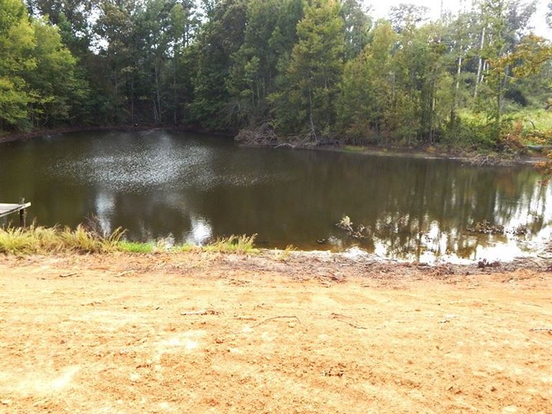 Home Site, Pond, Trees : Grenada : Grenada County : Mississippi