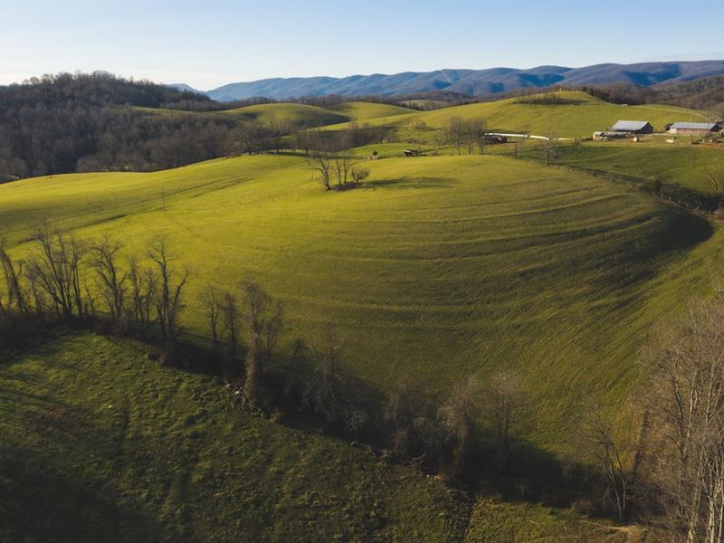 Pasture Land in Giles County VA : Pembroke : Giles County : Virginia