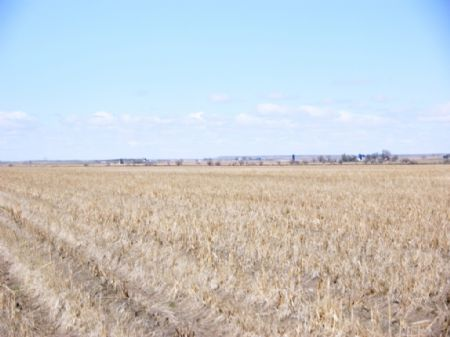 Jankovsky Inc Land Auction : Julesburg : Sedgwick County : Colorado