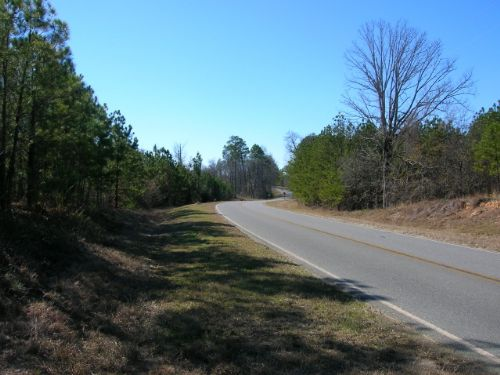 565 Acres Merchantable Timber : Dudley : Laurens County : Georgia