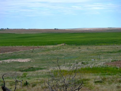 Kirk Consignment Land Auction : Kirk : Yuma County : Colorado