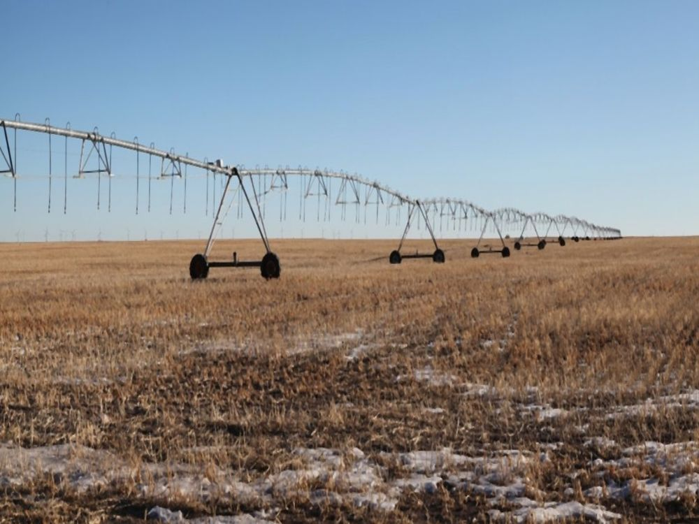 Weld Cty Pivot Irr & Pasture & Land : Keota & Grover : Weld County : Colorado