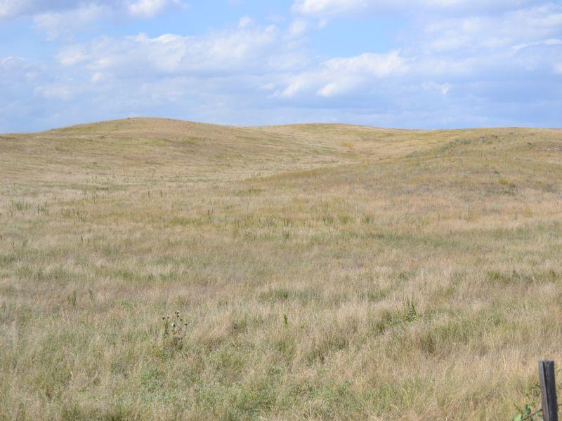 Pasture Land Auction : Ogallala : Keith County : Nebraska