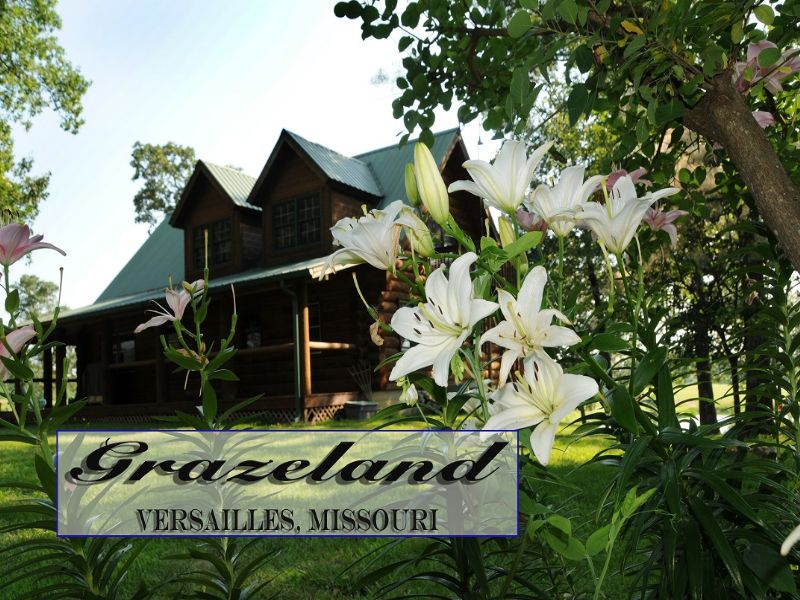 Grazeland Country Estate : Versailles : Morgan County : Missouri