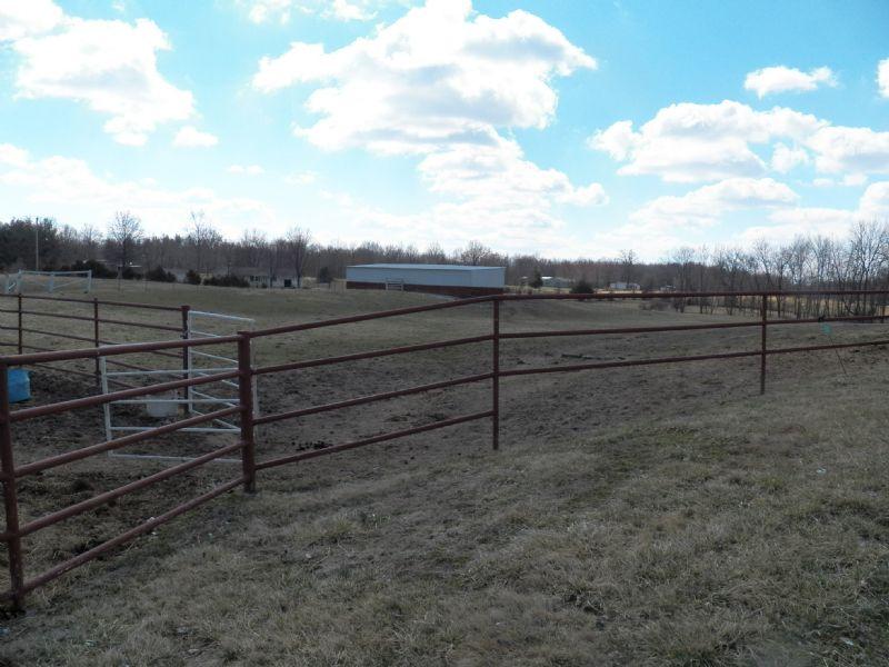 Horse Farm Auction- Live : Salem : Marion County : Illinois