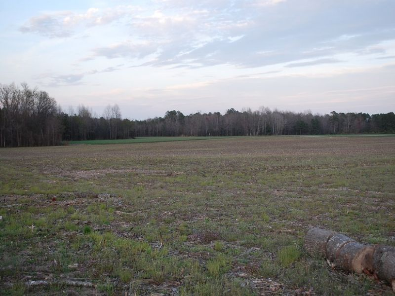 3 Land Parcels- Multi-property : Suffolk : City of Suffolk County : Virginia