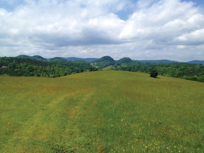 Absolute: 309.6 Acres In 11 Tracts : Cedar Bluff : Russell County : Virginia