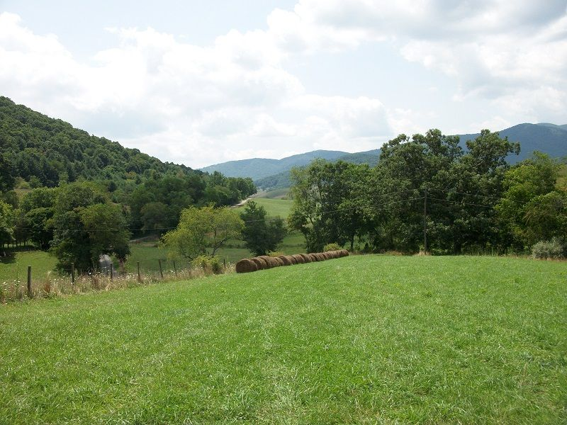 Multi-tract Real Estate Auction : Elk Creek : Grayson County : Virginia