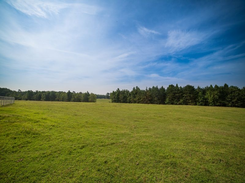 98.63± Acres : Bumpass : Louisa County : Virginia
