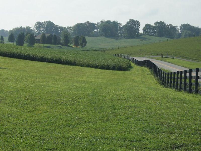 Real Estate & Personal Property : Bowling Green : Warren County : Kentucky