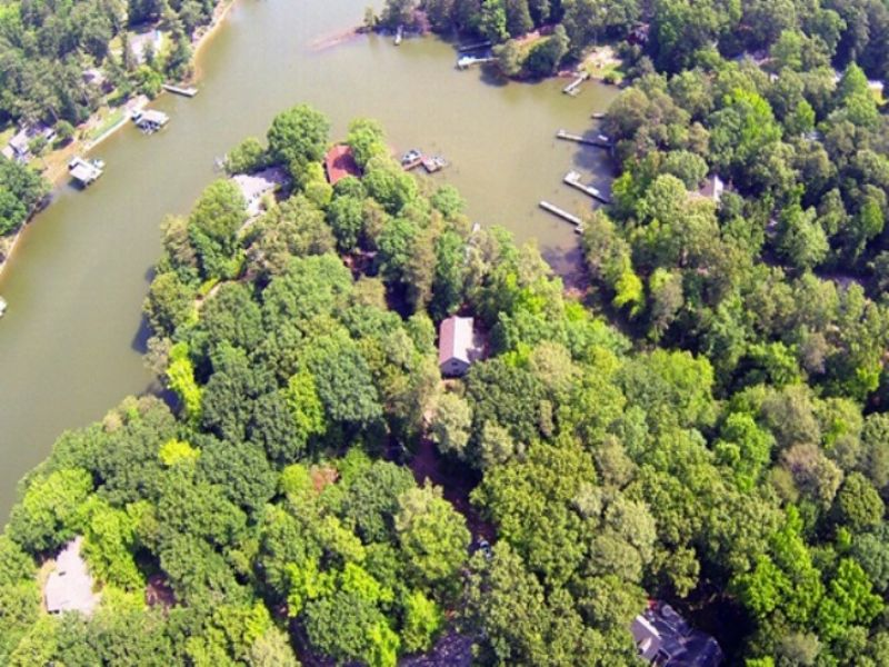 Multi-lot Waterfront Auction : Reedville : Northumberland County : Virginia