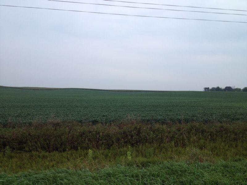 Productive Iowa Farmland : Terril : Dickinson County : Iowa