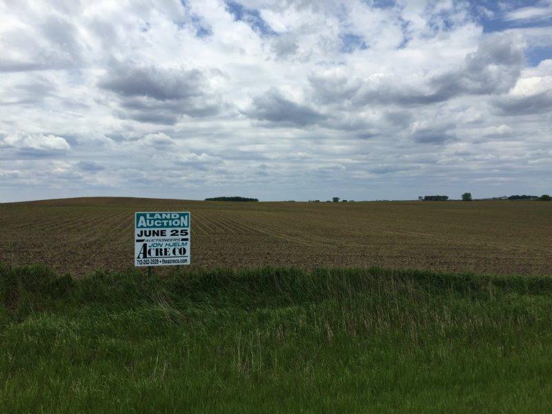 194 Acres Productive Farmland : Emmetsburg : Palo Alto County : Iowa