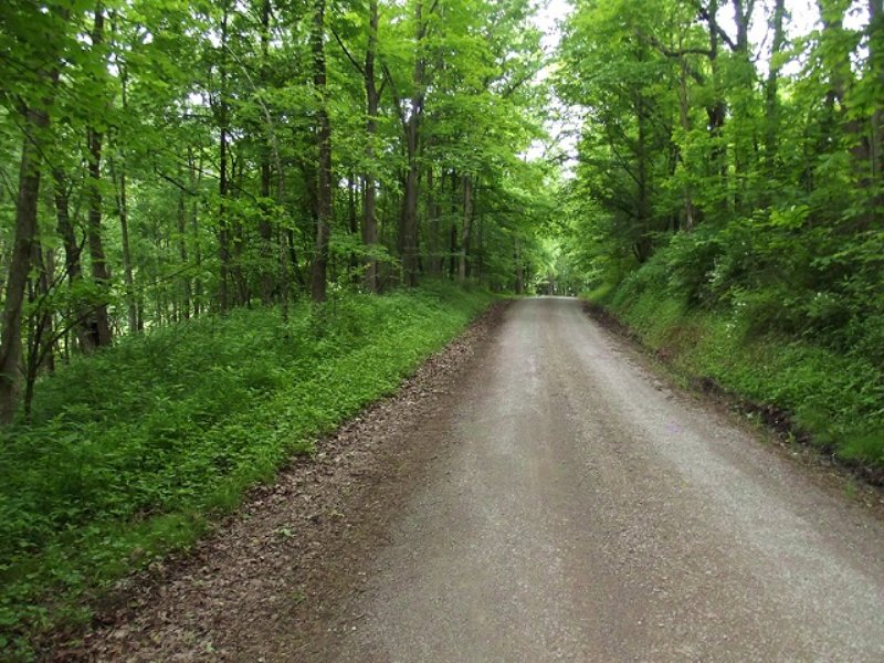 Hunting Recreational Land : Freeport : Harrison County : Ohio