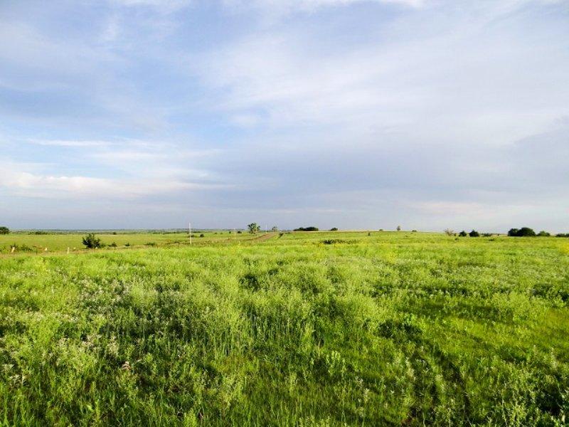 Auction 640± Kansas Acres : Glasco : Cloud County : Kansas