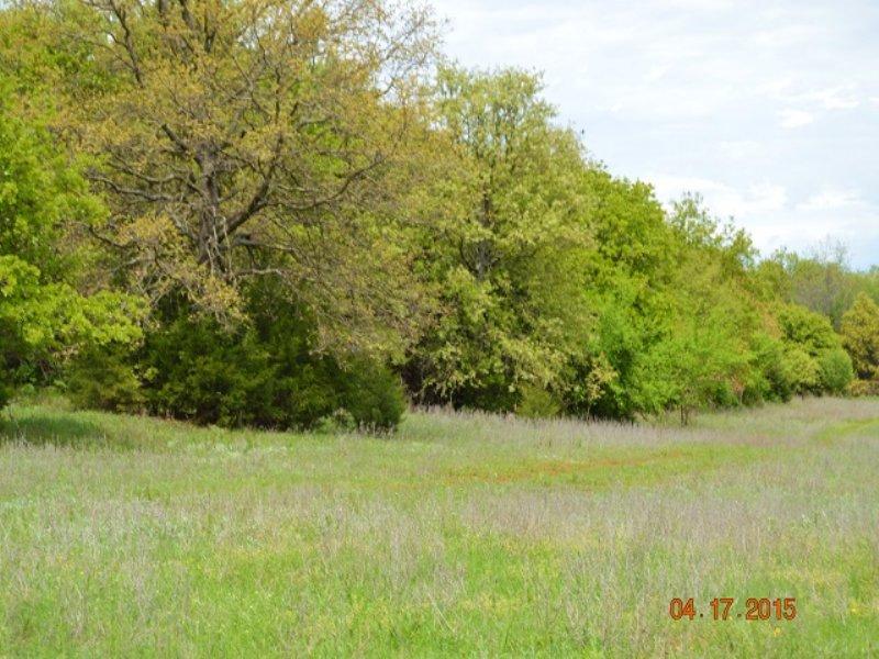 Oklahoma Land Auction : Blanchard : McClain County : Oklahoma