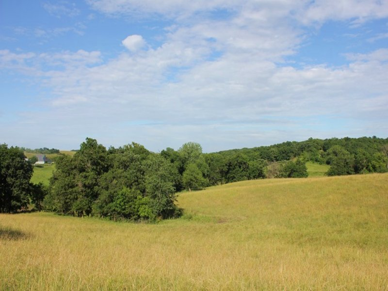 Southern Iowa Online Land Auction : Lamoni : Decatur County : Iowa