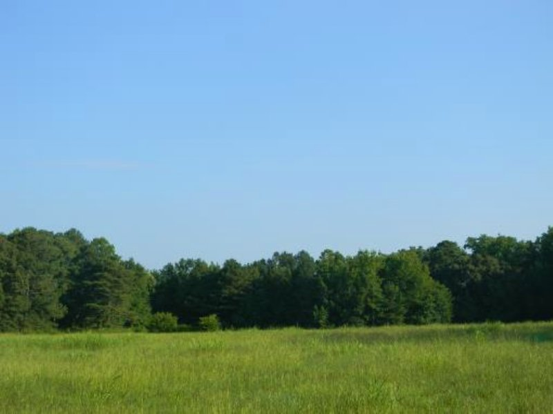 26± Acre Multi-tract Auction : Hartselle : Morgan County : Alabama