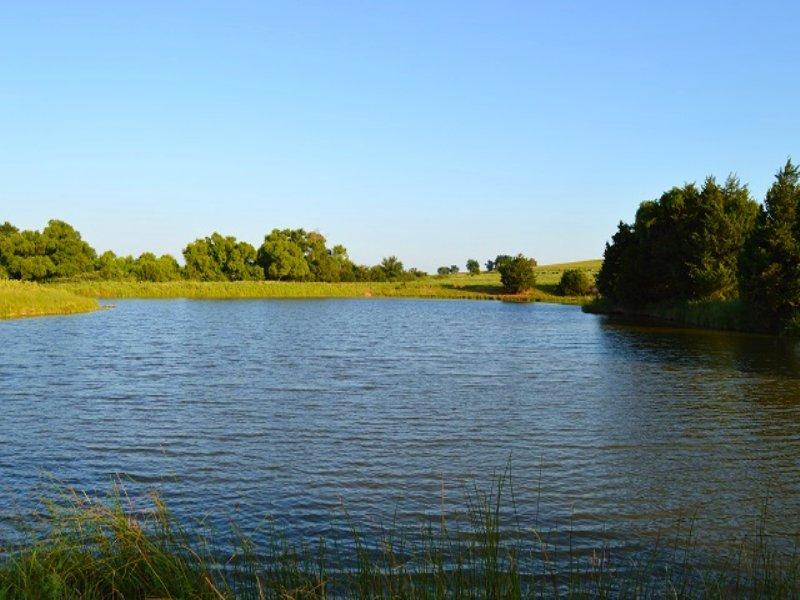 160± Acre Oklahoma Land Auction : Minco : Grady County : Oklahoma