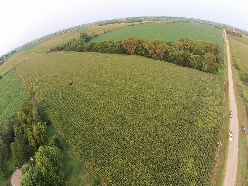 63.60 Acres Of Cropland : Weston : Saunders County : Nebraska
