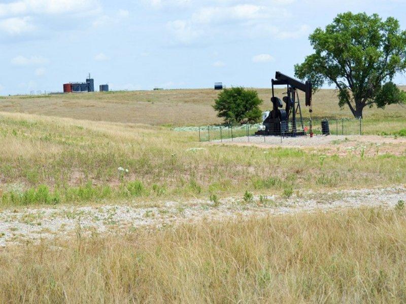 Auction - 157.14± Acres Of Farmland : Walker : Ellis County : Kansas