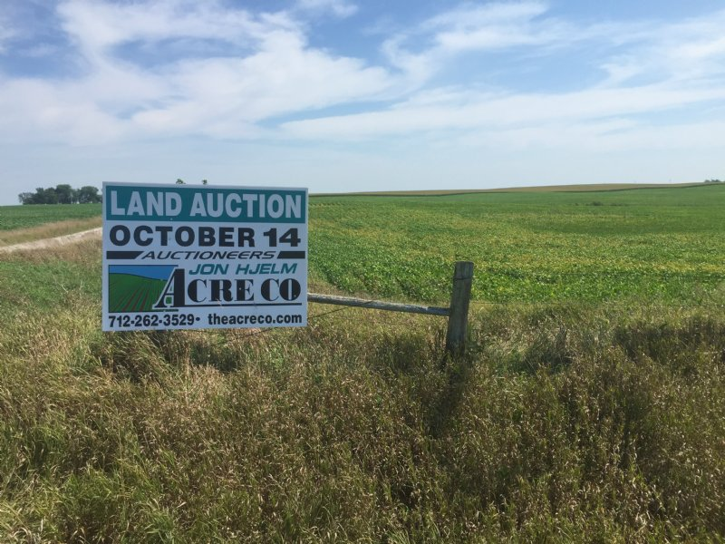 Tillable Acres With Creek & Trees : Gilmore City : Pocahontas County : Iowa